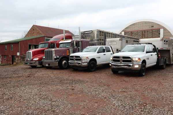 Truck 2 1000